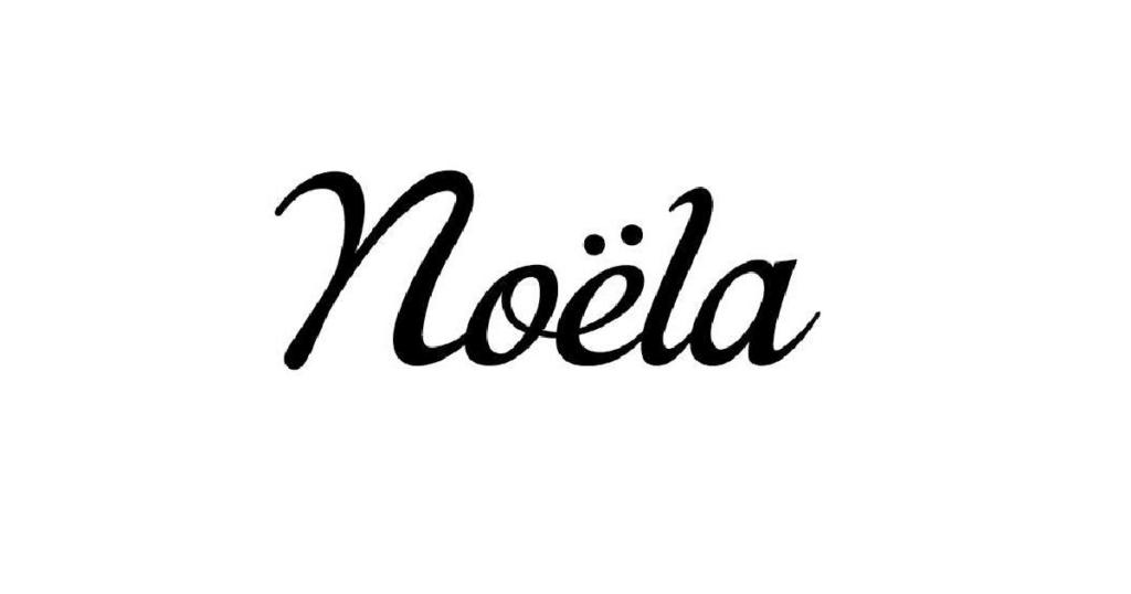 ノエラ(Noela)福袋2022の中身ネタバレや予約方法は?値段や店頭販売での購入方法も調査!
